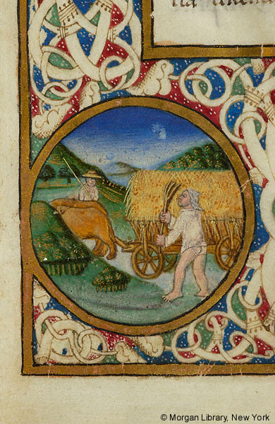De Re Rustica Ms M 139 Fol 2r Images From Medieval And