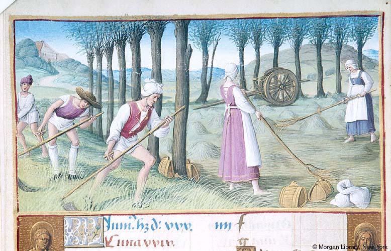 Haymakers,c.1550, Henry VIII Book of Hours